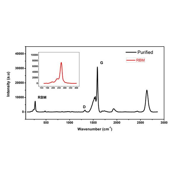 Raman spectra of carbon nanotubes